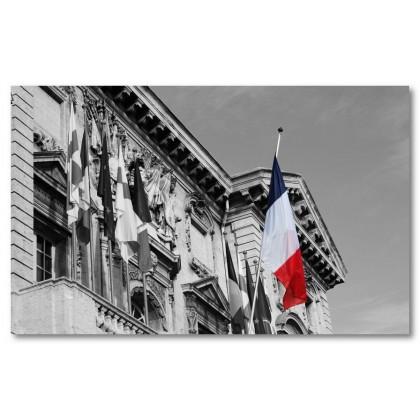 Αφίσα (Γαλλικός, σημαία, μαύρο, λευκό, άσπρο)